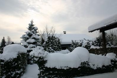 Schnee 35 (spx)