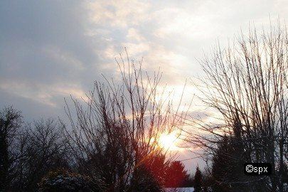 Winter-Sonne (spx)